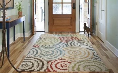 Colorful clean area rug for entry way or foyer